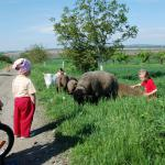 výlet do Šakvic 8.5.2013